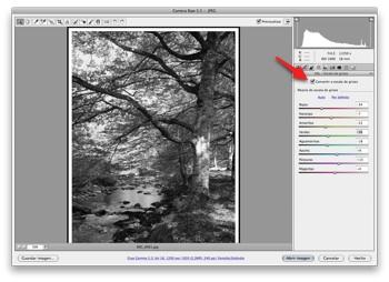 Camera Raw 5.5 -  JPEG-1